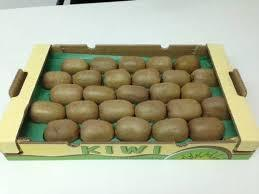 FRESH KIWI FRUIT GRADE A