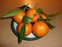 FRESH SWEET MANDARINE CITRUS FRUIT