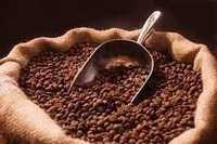 COFFEE BEANS FOR MAKING COFFEE AND INDUSTRIAL USE