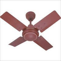 ACTIVA BROWN (C) || Rs.780