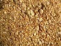 Best Price Groundnut Meal For Animal Feed