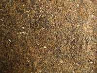 Quality Rapeseed Meal / Canola Meal / Mustard Meal for sale