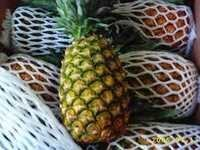 Sweet Fresh Pineapples