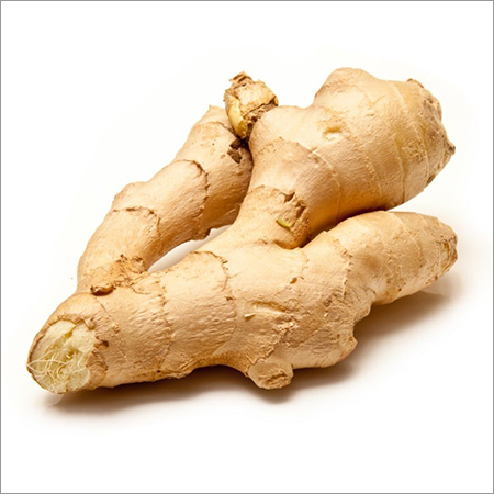 Ginger Dried Powder