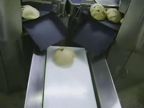 Half Cooked Chapati Making Machine