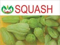 Squash Fruits