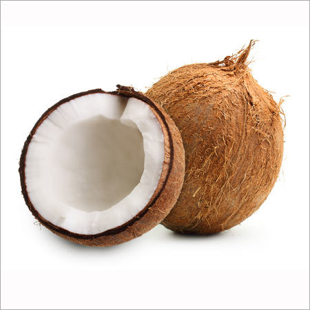 White Back Coconut