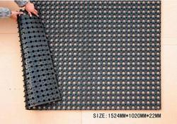 Holo front door rubber mats