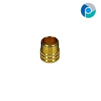 Brass 1 Bspt & Male Cpvc