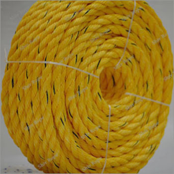Yellow Danline Ropes