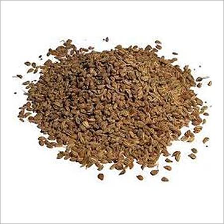 Celery Radhuni Seed (Ajmud)