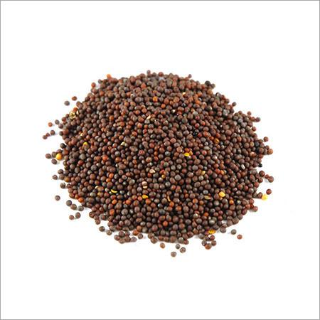 Brownmustard Seed (Rai)