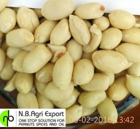 Fresh Blanched Groundnuts