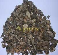 Amla Fruit Dried