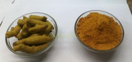Turmeric Powder  (Haldi)