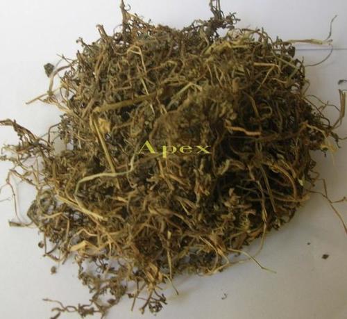 Bacopa Monnieri Powder (BRAHMI)