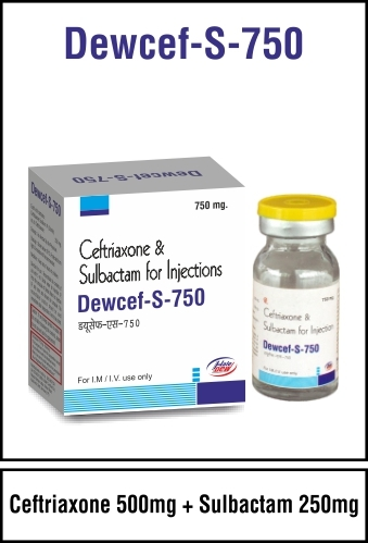 Ceftriaxone 500 mg + Sulbactum 250 mg