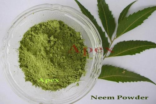 Neem Leaf Powder - Manufacturers & Suppliers, Dealers
