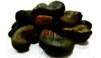 Andhra Pradesh Cashew Nuts