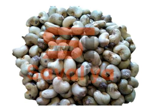 Benin Raw Cashew Nuts