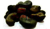 Nigeria Raw Cashew Nuts