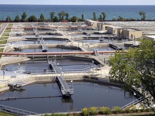 Microbial Culture For Sewage Treatment