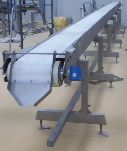 Fruit and Vegetable Processing Conveyor