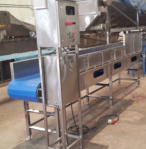 F & V Inspection Belt Conveyors
