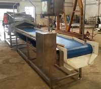 Vegetable Cleaning and Sorting Conveyor