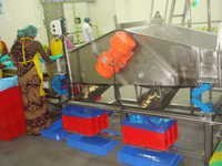 Vibratory fruit vegetable Grader Shaker