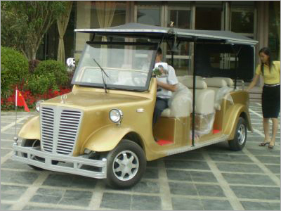 Electric Car For Houses Showing With 8 Seats