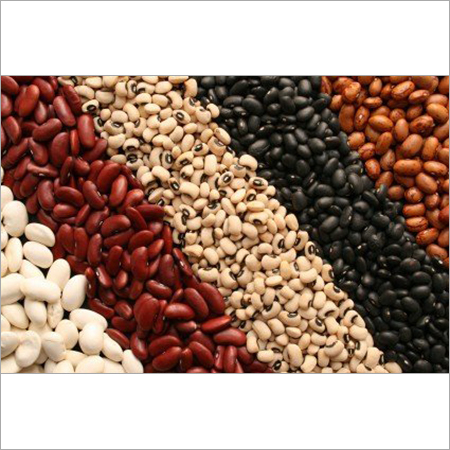 Kidney Beans( White,Red,Black)