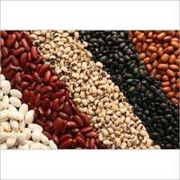 Kidney Beans( White,Red,Black)