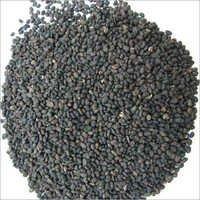 Bawchi Seed