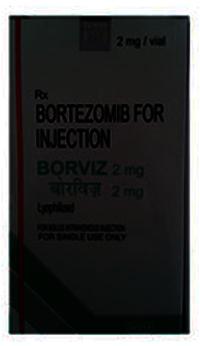 Borviz