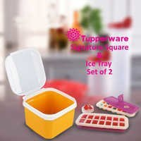Square Container & Ice Tray