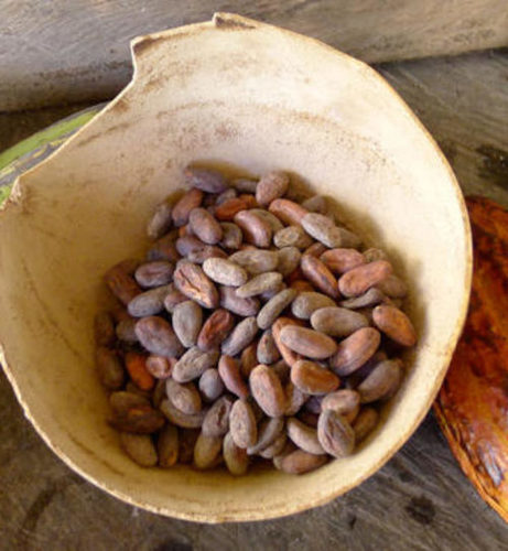 Natural Raw Cacao