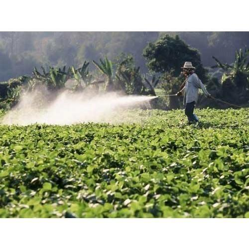 Corazon Organic Pesticides