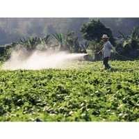 Corazon Organic Pesticides