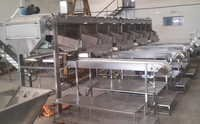 Gherkin Grading Machine with Inspection Conveyor