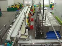 Merrygoround Belt Conveyor