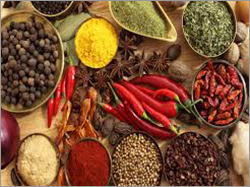 Authentic Indian Spices