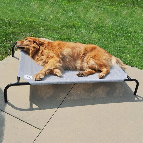 Wrought Iron Dog Beds