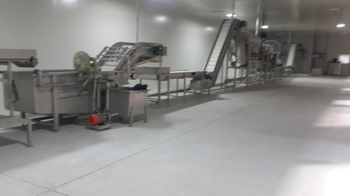 IQF Frozen Vegetable Processing Machinery