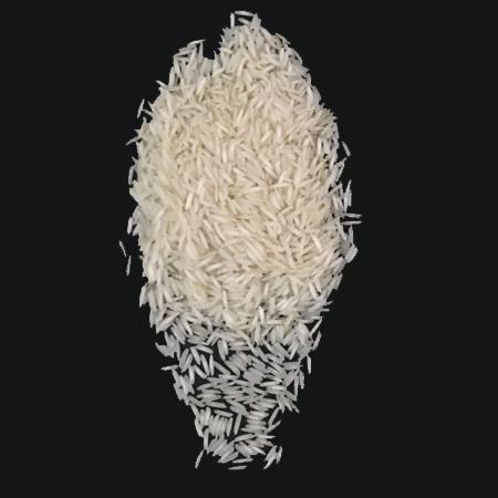 1121 White Rice