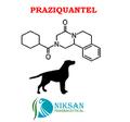 Praziquantel IP/BP/USP