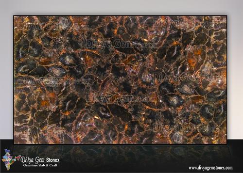 Black Petrified Wood Slab