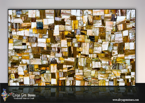 Petrified Wood Retro Slabs