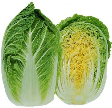 Chinese Cabbage Showing Seeds