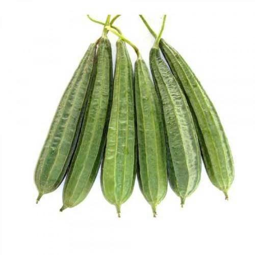 Ridgegourd Showing Seeds